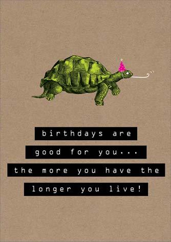 The Art File Turtle Birthday Card Rk035