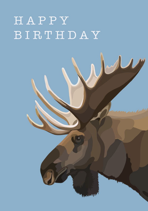 Blank Note Cards >> Other Vendors - Moose - Birthday Card #GCW012