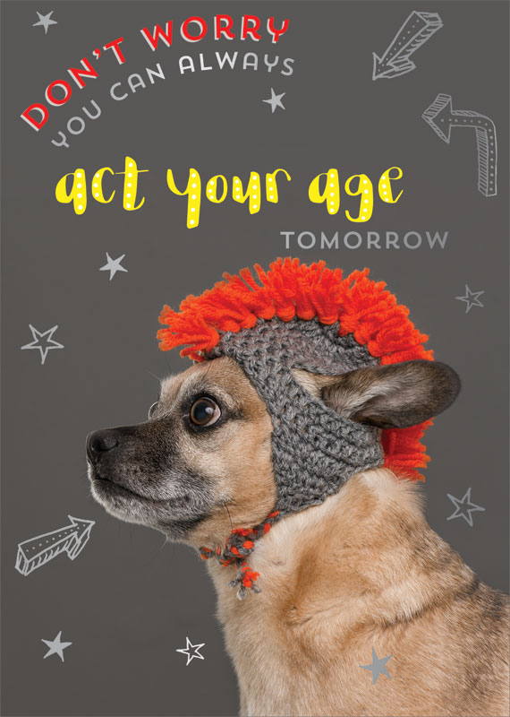 Ling Design Ltd Dog With Hat Birthday Card Lnq0157
