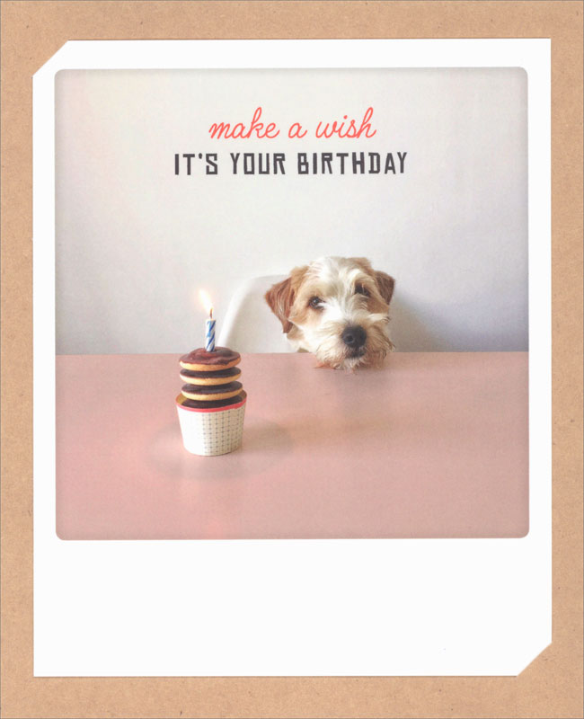 Pickmotion   Wish Dog   Birthday Card #ZG0520