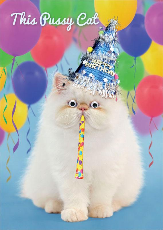 Tracks Publishing Ltd Pussy Cat Birthday Card Gnq010