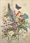 Botanical Butterfly - Blank Card