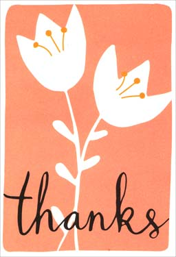 White Flowers - Thank You Boxed Note Cards