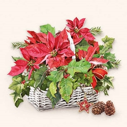 Poinsettia Basket - Christmas Cocktail Napkins Christmas