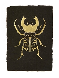 Beetle - Blank Card