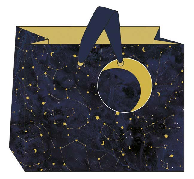 Constellation Landscape Bags Christmas