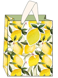 Oranges & Lemons Medium Bags
