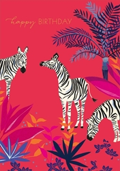 Zebra - Birthday Cards