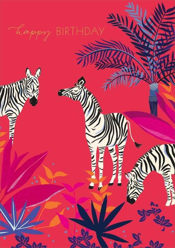 the art file  zebra  birthday cards sam071nq