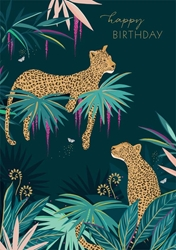 Cheetahs - Birthday Card