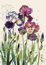 Mixed Irises - Blank Card