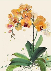 Orange Orchids - Blank Card