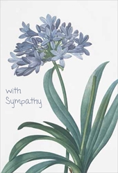 Blue Flowers - Sympathy Cards