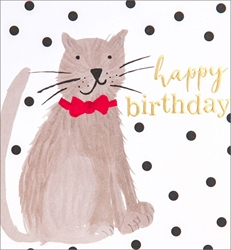 Cat - Birthday Card Birthday