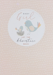 Pink Birds - Baby Card