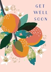 Oranges - Get Well Card