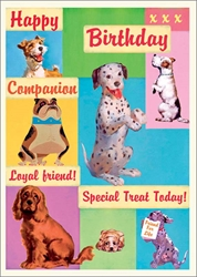 Dogs - Birthday Card
