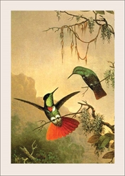 Two Hummingbirds - Blank Card