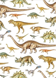 Dinosaurs - Sheet Gift Wrap