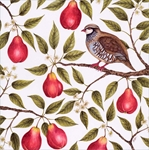 Partridge in a Pear Tree - Christmas Card Christmas