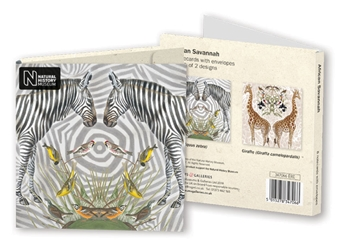 Square Notecard Wallet - Natural History Museum, African Savannah notecards and stationery