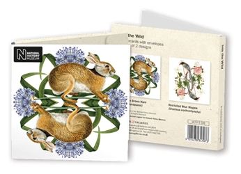 Square Notecard Wallet - Natural History Museum, Into the Wild notecards and stationery