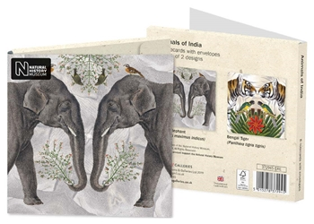 Animals of India - Notecard Wallets