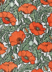 Poppies - Blank Card