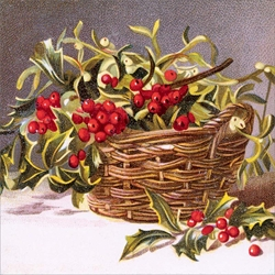 Basket of Holly - Cello Packs Christmas