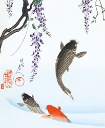Carp Jumping under a Wisteria Tree - Blank Card
