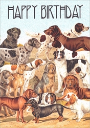 The Gathering of Dogs - Birthday Card Birthday
