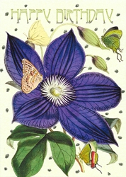 Clematis - Birthday Card
