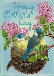 Birds and Nest - Mothers Day Card