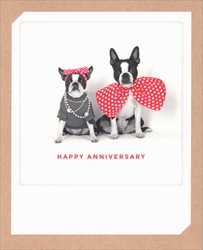Dogs - Anniversary Card