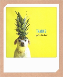 Dog - Thank You Card