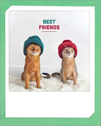 Cats in Hats - Friendship Card Friendship