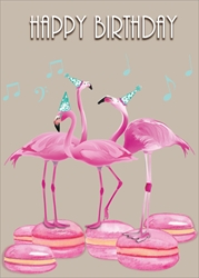 Flamingo - Birthday Card Birthday