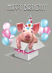 Pig in Box - Birthday Card Birthday