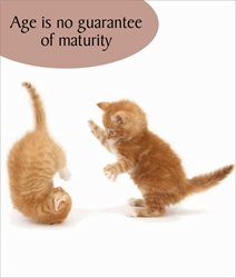 Age Maturity - Birthday Card