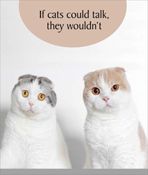 Cats Talk - Friendship Card