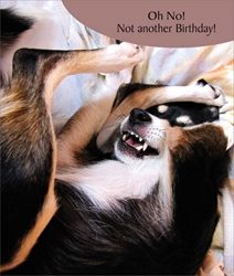 Another - Birthday Card
