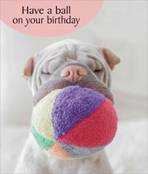 Have a Ball - Birthday Card