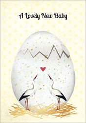 Egg - Baby Card