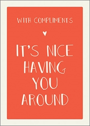 Nice Having - Friendship Card Friendship