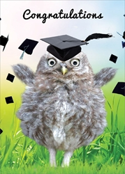 Owl with Cap - Graduation Card