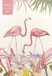 Flamingos - Birthday Card Birthday